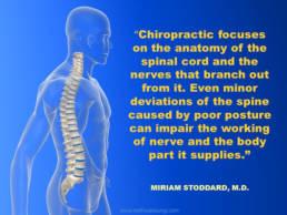 Scoliosis Treatment - Revolution Chiropractic - Miami Queensland