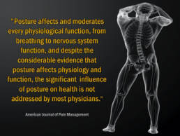 NeuroStructural Chiropractic - Revolution Chiropractic - Miami Queensland