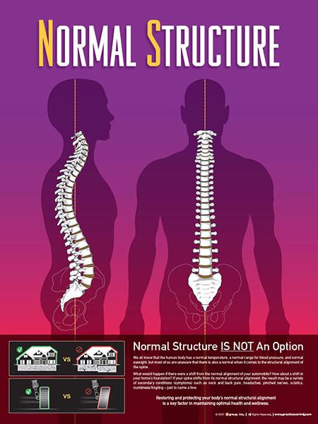 Scoliosis Chiropractor in Miami - Blog - Mark Ilgguth - Revolution Chiropractic - Image